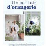 nest-bel-092016-cover-rehbeintish-_lehnstuhl-1-fileminimizer